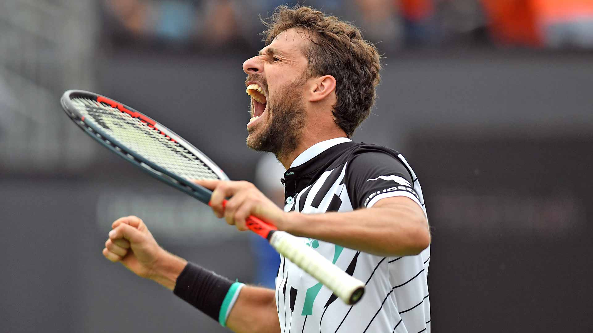 <a href='https://www.atptour.com/en/players/robin-haase/h756/overview'>Robin Haase</a>