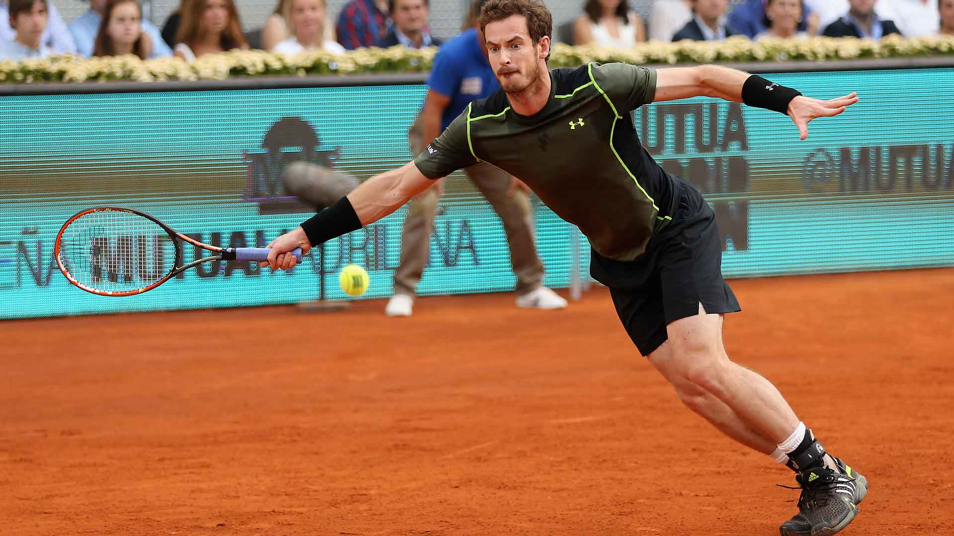Madrid 2015 Domingo Murray