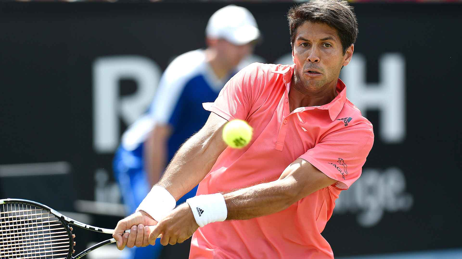 sHertogenbosch 2015 Wednesday Verdasco.jpg